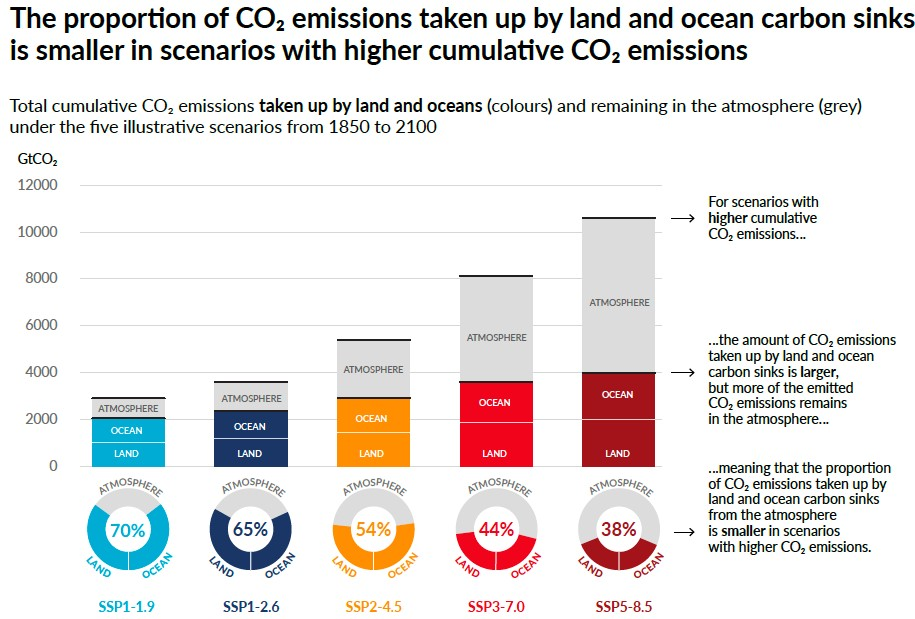 The proportion of carbon dioxide emissions taken up by land and ocean sinks is smaller in scenarios with higher cumulative CO2 emissions